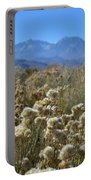 Rabbit Brush Owens Valley Portable Battery Charger