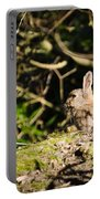 Rabbit In The Woods Portable Battery Charger