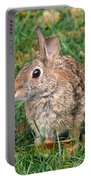 Rabbit Portable Battery Charger