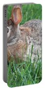Rabbit On The Run Portable Battery Charger
