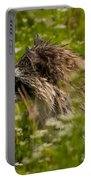 Raccoon In The Meadow Portable Battery Charger