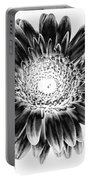 Radiant Solarized Portable Battery Charger
