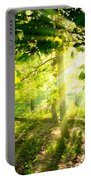 Radiant Sunlight Through The Trees Portable Battery Charger