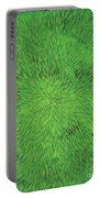 Radiation Green Portable Battery Charger