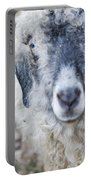 Raggedy Goat Portable Battery Charger