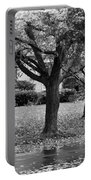 Rain And Leaf Ave In Black And White Portable Battery Charger