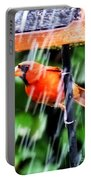 Rain Bird Portable Battery Charger