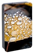 Rain Drops On Autumn Birch Leaf Portable Battery Charger