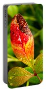 Rain Drops On Colorful Leaf Portable Battery Charger