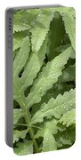 Rain Drops On Ferns Portable Battery Charger