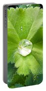 Raindrops On Leaves Portable Battery Charger