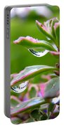 Raindrops On Sedum Portable Battery Charger