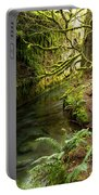 Rain Forest 2 Portable Battery Charger