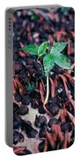 Rain Forest Seedling, Indonesia Portable Battery Charger