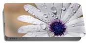 Rain Soaked Daisy Portable Battery Charger