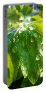 Rain Soaked Leaf Portable Battery Charger