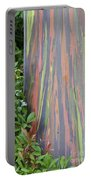 Rainbow Eucalyptus Portable Battery Charger