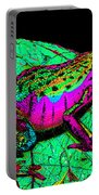 Rainbow Frog 3 Portable Battery Charger