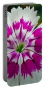 Rainbow Pink Flower Portable Battery Charger