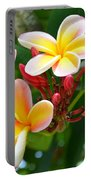 Rainbow Plumeria - No 4 Portable Battery Charger