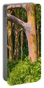 Rainbow Row - Eucalyptus Trees Of Maui Portable Battery Charger