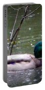 Raindrops Falling On Duck Head Portable Battery Charger
