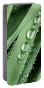 Raindrops On Blades Of Grass Portable Battery Charger