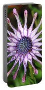 Raindrops On Daisy Square Portable Battery Charger