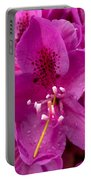 Raindrops On Pink Petals Portable Battery Charger