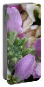 Raindrops On Purple And White Flowers Portable Battery Charger