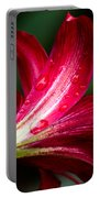 Raindrops On Red Petals Portable Battery Charger