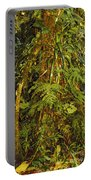 Rainforest Colors Portable Battery Charger