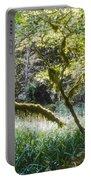 Rainforest Landscape Portable Battery Charger