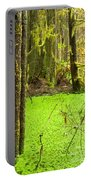 Rainforest Wetland Wildernis Of West Coast Bc Portable Battery Charger