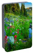 Rainier Wildflower Creek Portable Battery Charger