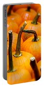 Rainy Day Pumpkins Portable Battery Charger