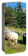 Ram And Ewes Portable Battery Charger