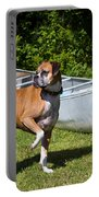 Ranger The Boxer Portable Battery Charger