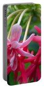 Rangoon Creeper Flower Portable Battery Charger