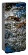 Rapids On The Gore Portable Battery Charger