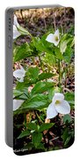 Rare Great White Trilliums Portable Battery Charger