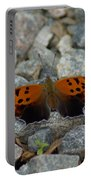 Rarely-sighted Butterfly Species Portable Battery Charger
