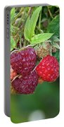 Rasberries Portable Battery Charger
