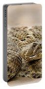 Rattlesnake 1 Portable Battery Charger