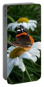 Red Admiral On A Daisy Portable Battery Charger