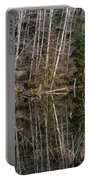 Red Alders Portable Battery Charger