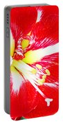 Red Amaryllis Portable Battery Charger