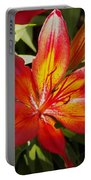 Red And Orange Lilly In The Garden Portable Battery Charger