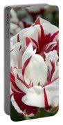 Red And White 6393 Portable Battery Charger
