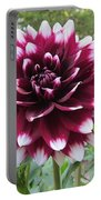 Red And White Dahlia Portable Battery Charger